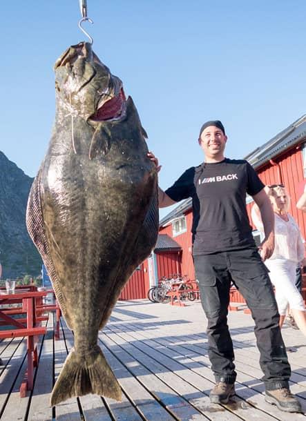 Nordmeer Angelreisen 162 kg Halibut Lofoten