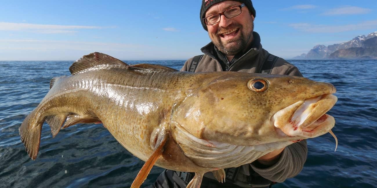 21 kg Dorsch, gefangen am Mahlstrom