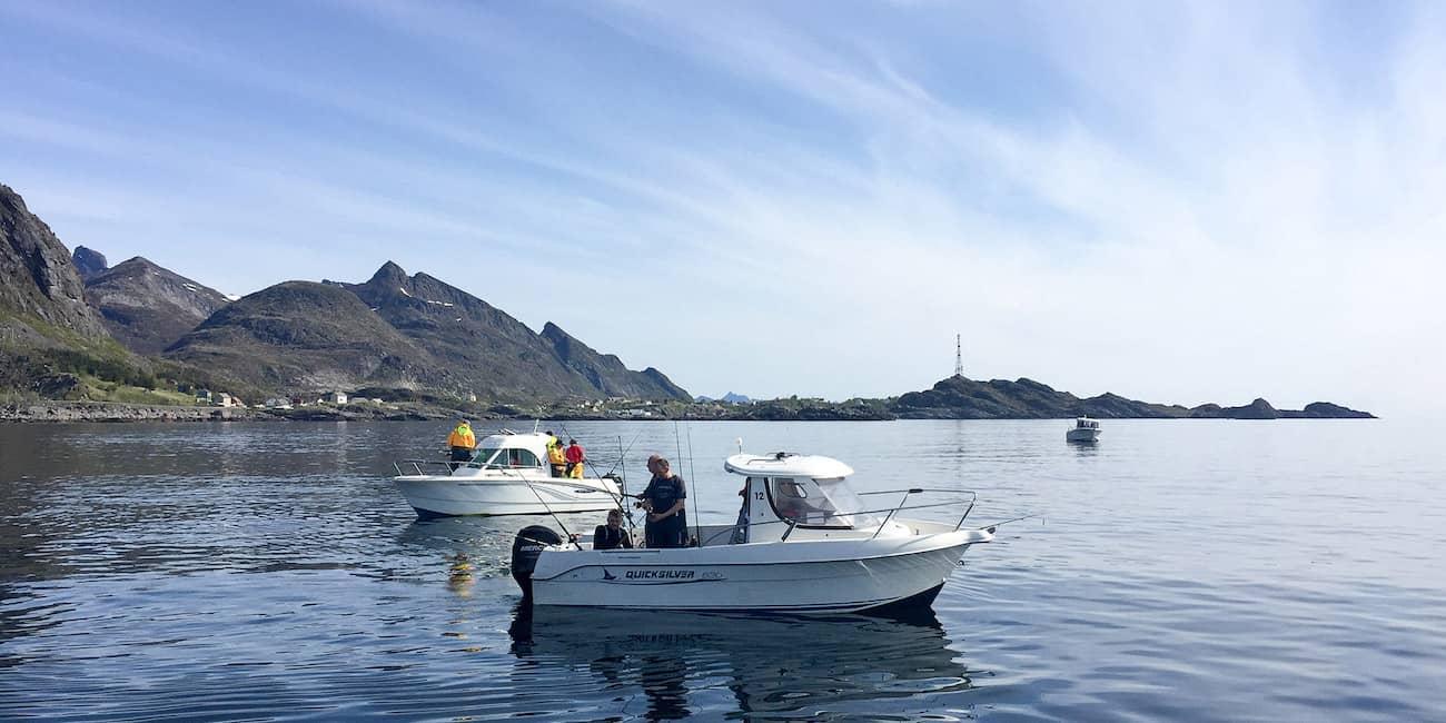 Angelparadies: Küstengewässer der Lofoten