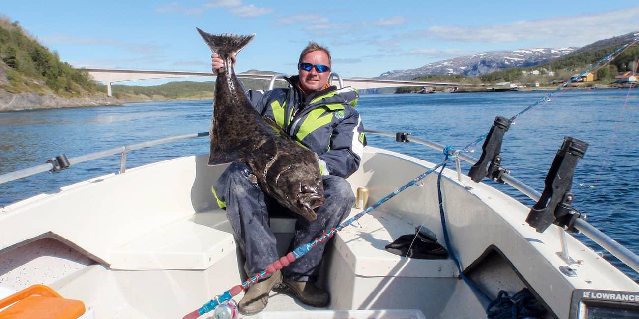 Starke Gezeitenströme sorgen für hohen Fischbestand